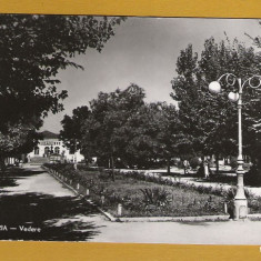 ALEXANDRIA 1962
