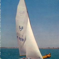 Ilustrata Sport barca cu vele