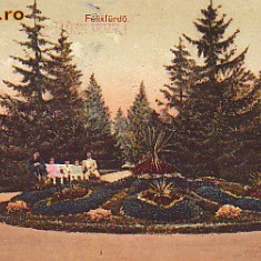 Romania, Baile Felix, carte postala circulata 1912: Parcul, animat - Carte Postala Crisana 1904-1918, Fotografie