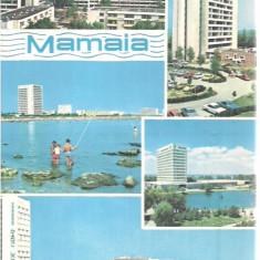 Carte postala-MAMAIA-colaj