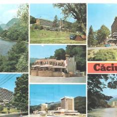 Carte postala- CACIULATA-Colaj