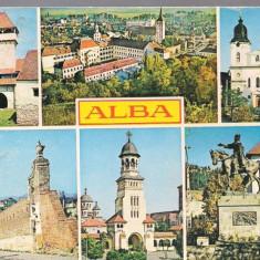 Carte postala-ALBA - Colaj