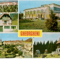 Carte postala- GHEORGHENI - Colaj