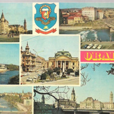 Carte postala- ORADEA - Colaj - Carte Postala Crisana dupa 1918