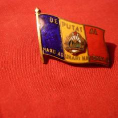 Insemn -Deputat Marea Adunare Nationala -anii '50 - Medalii Romania