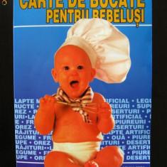 Carte de bucate pentru bebelusi - Monika Arndt - Carte Retete pentru bebelusi