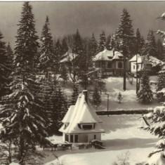 Ilustrata - Predeal, iarna
