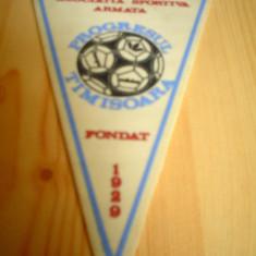 Fanion as progresul armata timisoara 1929 fotbal fan sport hobby de colectie - Fanion fotbal