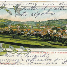 2482 - Germania - L I T H O - GROSSALMERODE - old postcard - used - 1905