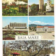 Carte postala-Baia Mare- colaj