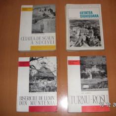 Monumentele patriei noastre (diverse titluri)- Editura Meridiane - Carte Arhitectura