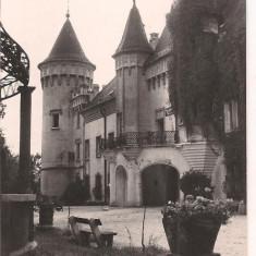Carte postala- CAREI- Palatul Cultural