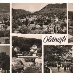 Carte postala-OLANESTI -Colaj - Carte Postala Oltenia dupa 1918