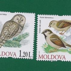 MOLDOVA - 2010 PASARI - Mi 698 - 701 - Timbre straine