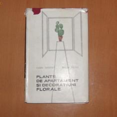 PLANTE DE APARTAMENT SI DECORATIUNI FLORALE - EUGEN SADOFSKY, AMELIA MILITIU - - Carte gradinarit