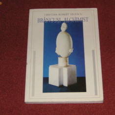 Brancusi alchimist - Cristian-Robert Velescu