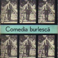 Iordan chimet - comedia burleasca - Carte Cinematografie