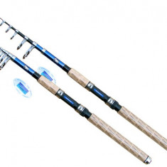 Lanseta fibra de carbon Traveler 3m Telescopica Baracuda