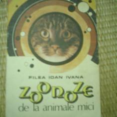 Filea Ioan Ivana Zoonoze de la animalele mici carte stiinta