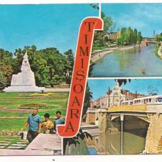 Carte postala- TIMISOARA- vedere - Carte Postala Banat dupa 1918