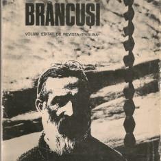Omagiu lui Brancusi ( editat de revista Tribuna la 100 de ani de la nastere) - Carte sculptura
