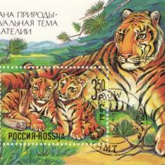 COLITA TIMBRE RUSIA 1992   TIGRU