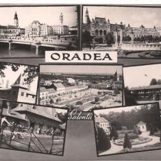 Carte postala-ORADEA-colaj - Carte Postala Crisana dupa 1918