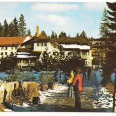 Carte postala(ilustrata)-POIANA BRASOV-Hotel Alunis - Carte Postala Transilvania dupa 1918