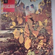Revista FLACARA - 1971 - Revista culturale