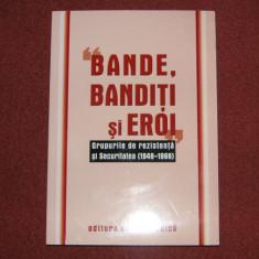 Bande, banditi si eroi. Grupurile de rezistenta si Securitatea (1948-1968) Miscarea legionara - Istorie