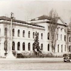 CP 210-93 Bucuresti -Muzeul de istorie naturala,, Gr.Antipa
