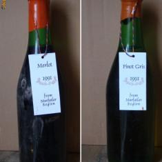 Pachet vinuri de colectie - Vinde Colectie, Aroma: Sec, Sortiment: Rosu, Zona: Romania 1970- 2000