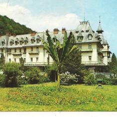 Carte postala(ilusrata)-CALIMANESTI-Vedere - Carte Postala Oltenia dupa 1918