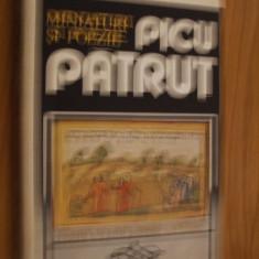 PICU PATRUT-- Miniaturi si Poezie -- Comori ale Artei Populare Romanesti - Carte Arta populara