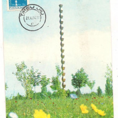 Ilustrata maxima- TARGU JIU-Coloana recunostintei fara sfarsit