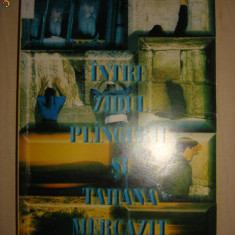 RAMONA LAZAR - INTRE ZIDUL PLINGERII SI TAHANA MERCAZIT - Carti Iudaism