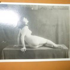 Fotografie veche arta erotica studio nud femeie 17 x 13 cm
