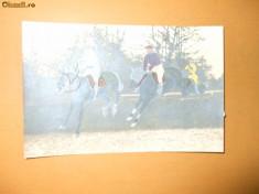 Carte postala Echitatie Jochei cu cai in cursa cu obstacole foto