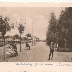 Targu Secuiesc - ( Kezdivasarhely - Jozsias setakert ) - 1917