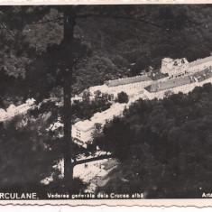 Carte postala- BAILE HERCULANE-Vedere generala de la Crucea Alba 1940