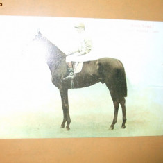 Carte postala echitatie cal animale Anglia jocheu Derby winner 1903 Rock Sand