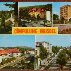 carte postala JUDETUL ARGES -  CAMPULUNG MUSCEL - 5 IMAGINI, CIRCULATA 1981