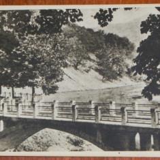 Carte postala rpr Libraria Noastra judetul Valcea - CACIULATA -CALIMANESTI- PODUL PESTE OLT, NECIRCULATA - Carte Postala Oltenia dupa 1918