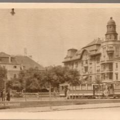 Timisoara - Piata Libertatii - Carte Postala Banat dupa 1918