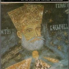 Cornelia Pillat - Pictura murala in epoca lui Matei Basarab - Album Arta
