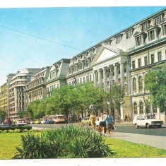 Carte postala-BUCURESTI-Universitatea - Carte Postala Muntenia dupa 1918