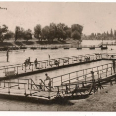 Carte postala-ARAD-Pe Mures - Carte Postala Crisana dupa 1918