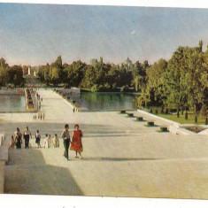 Carte postala-BUCURESTI-Vedere din Parcul Libertatii - Carte Postala Muntenia dupa 1918