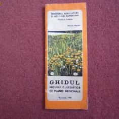 Ghidul micului culegator de plante medicinale - Mircea Alexan - Carti Agronomie