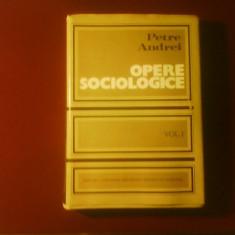 Petre Andrei Opere sociologice vol. I